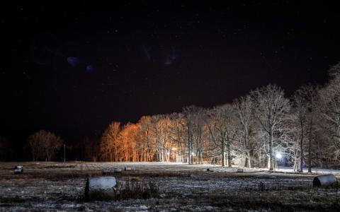 Kokneses parka izgaismošana.